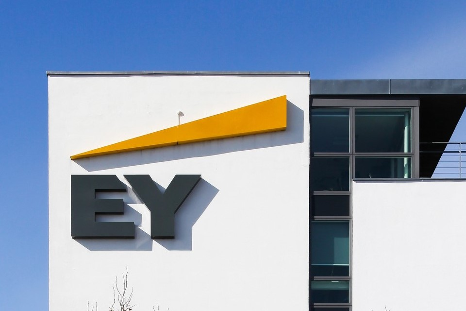 EY Has Blockchain-based Solution to Governments + 11 More Crypto News