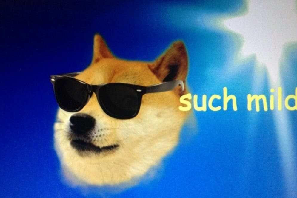 This is Why Dogecoin is Better than 'Altcoins-Degenerators'
