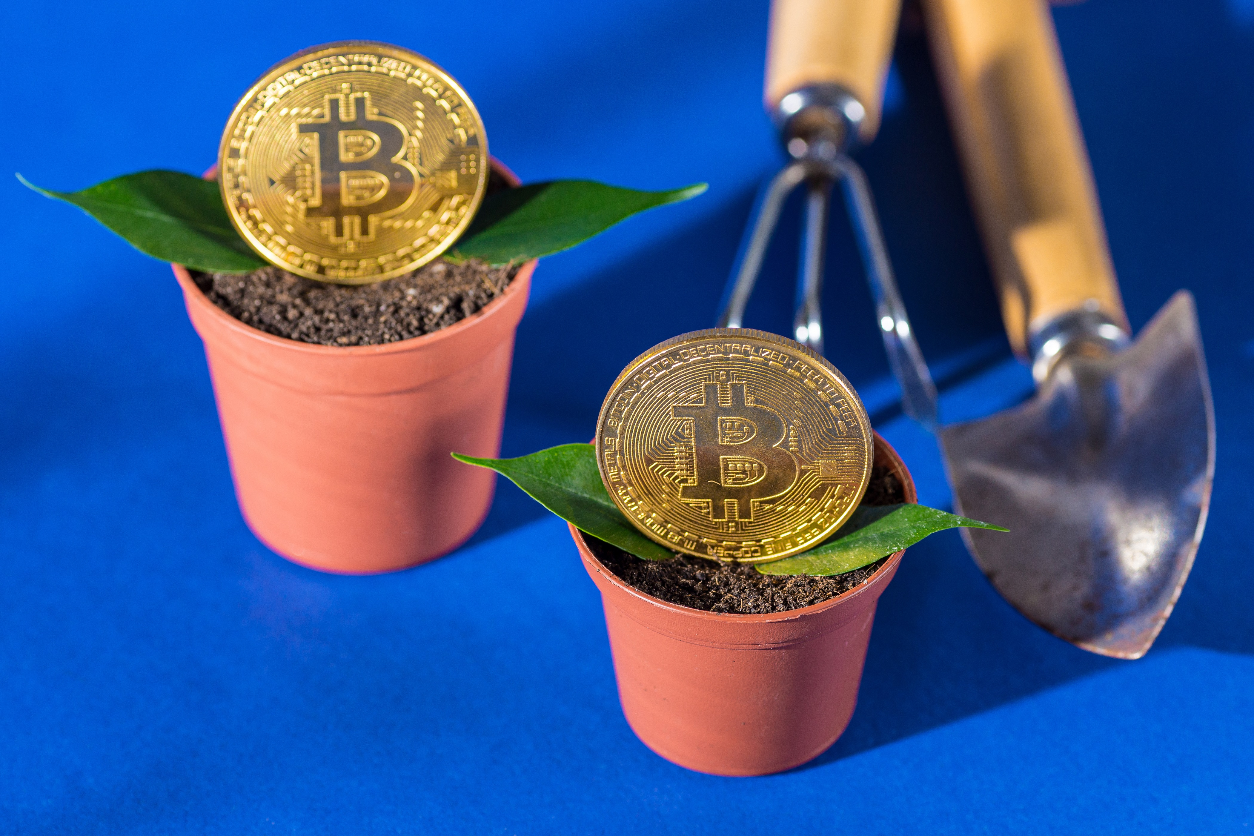 3 Bitcoin Sentiment Analysis Tools: How They Work & How to Use Them