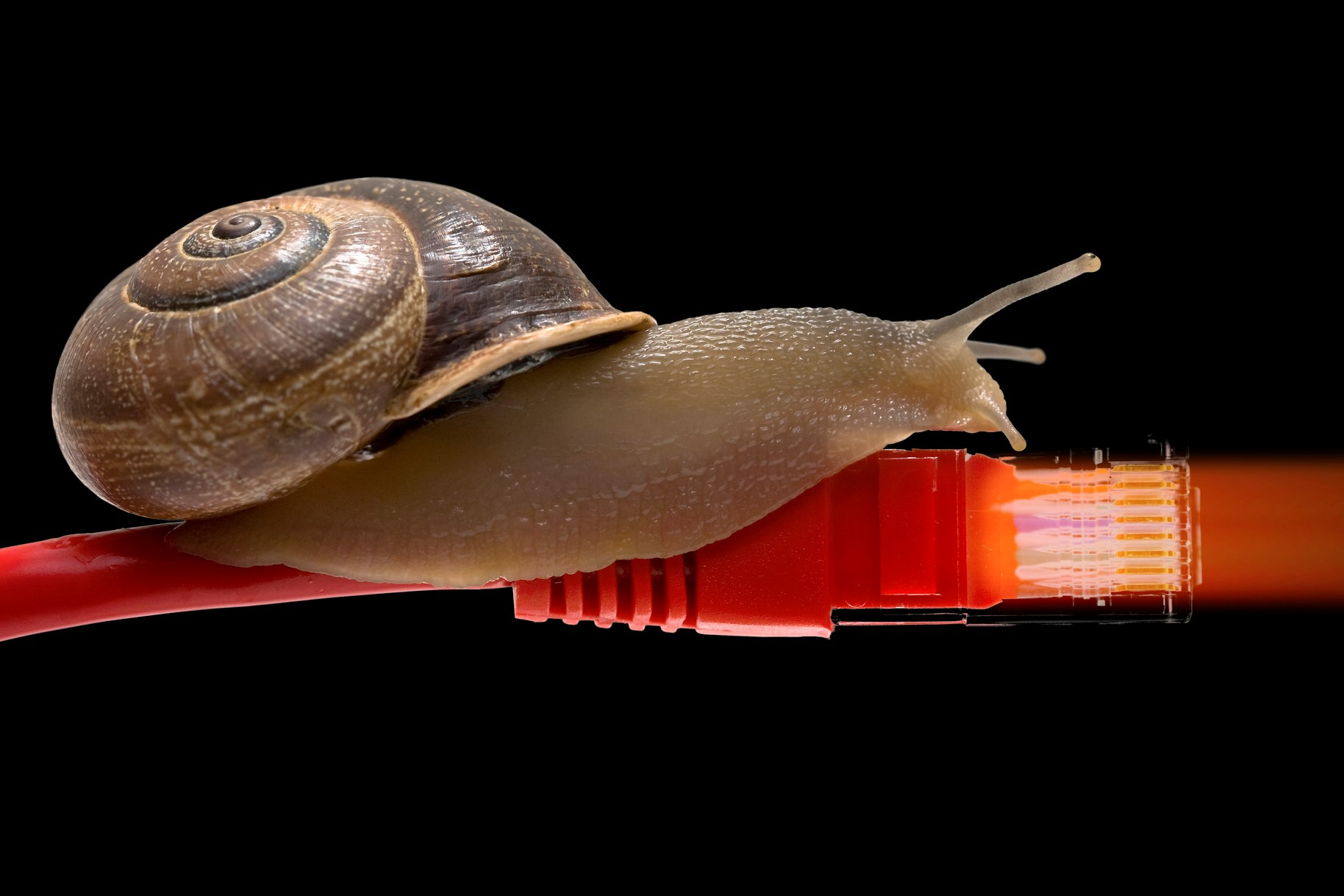 Why Blockchain Adoption Is Slow, and Why That's Nothing to Worry About