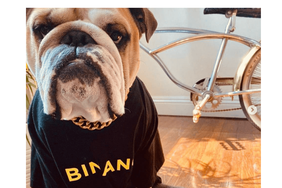 Binance Stays Quiet after Fisco Accuses it of Facilitating BTC 1,450 Laundry