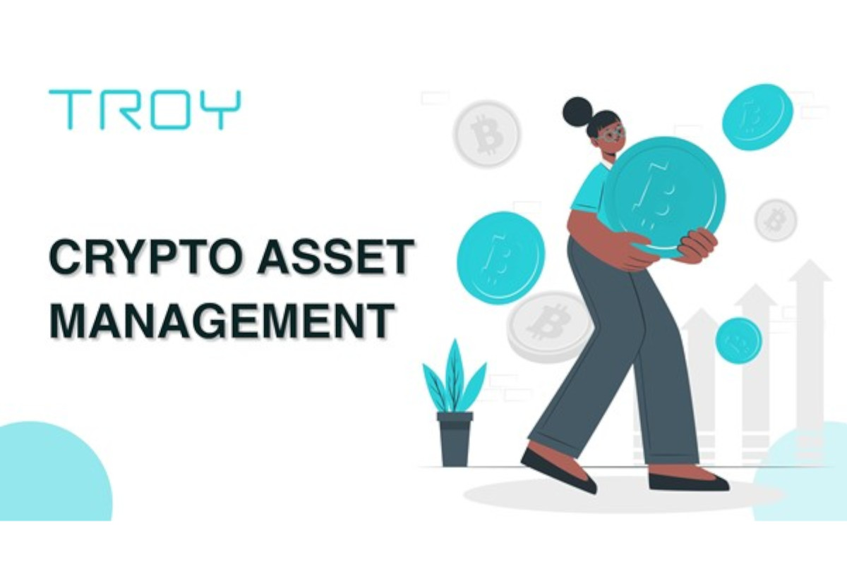 Breaking: Troy's Automatic Investment Tool for Asset Management