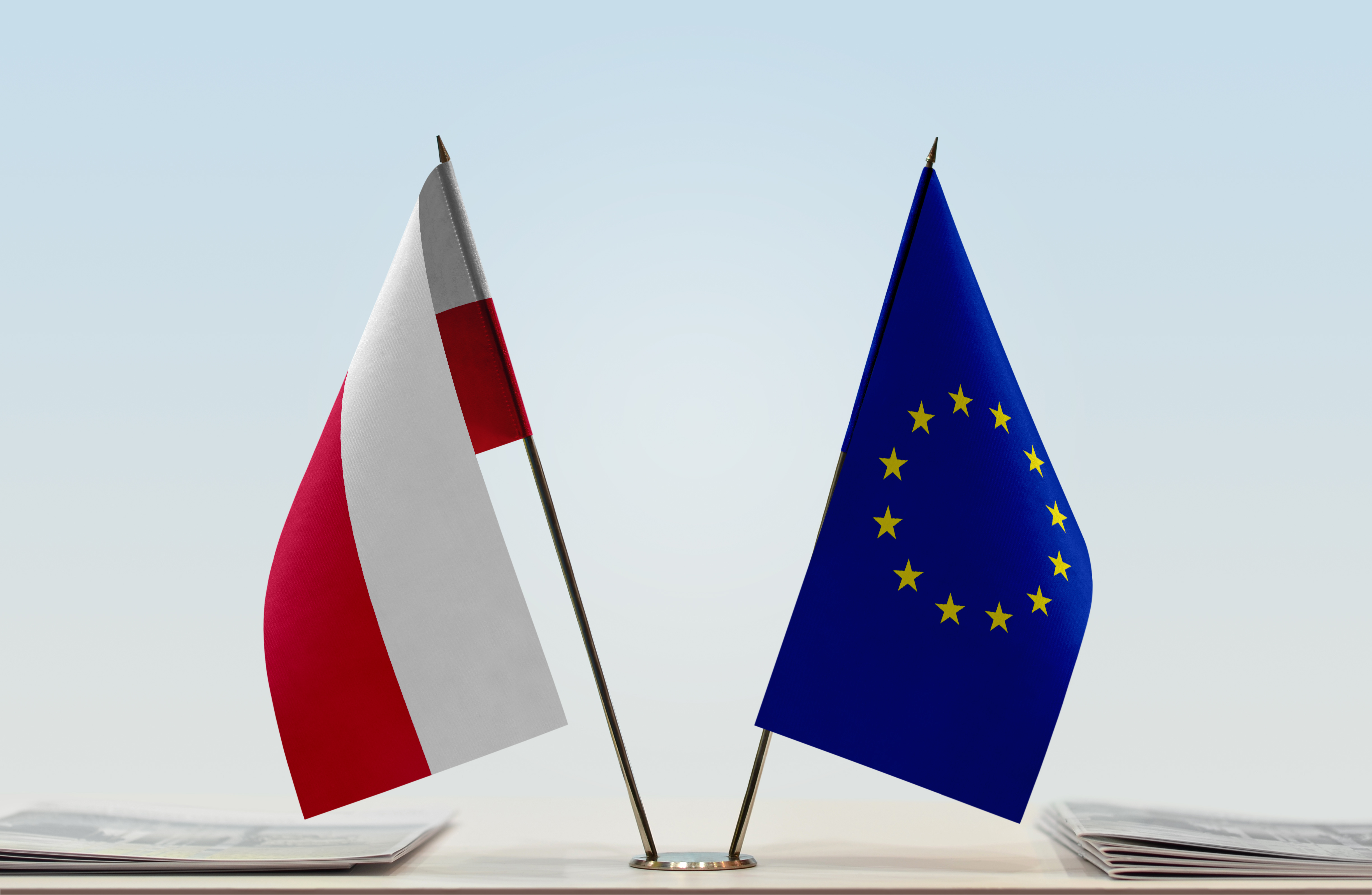 Poland Should Either Join Eurozone Or Issue Own CBDC - Stock Exchange CEO