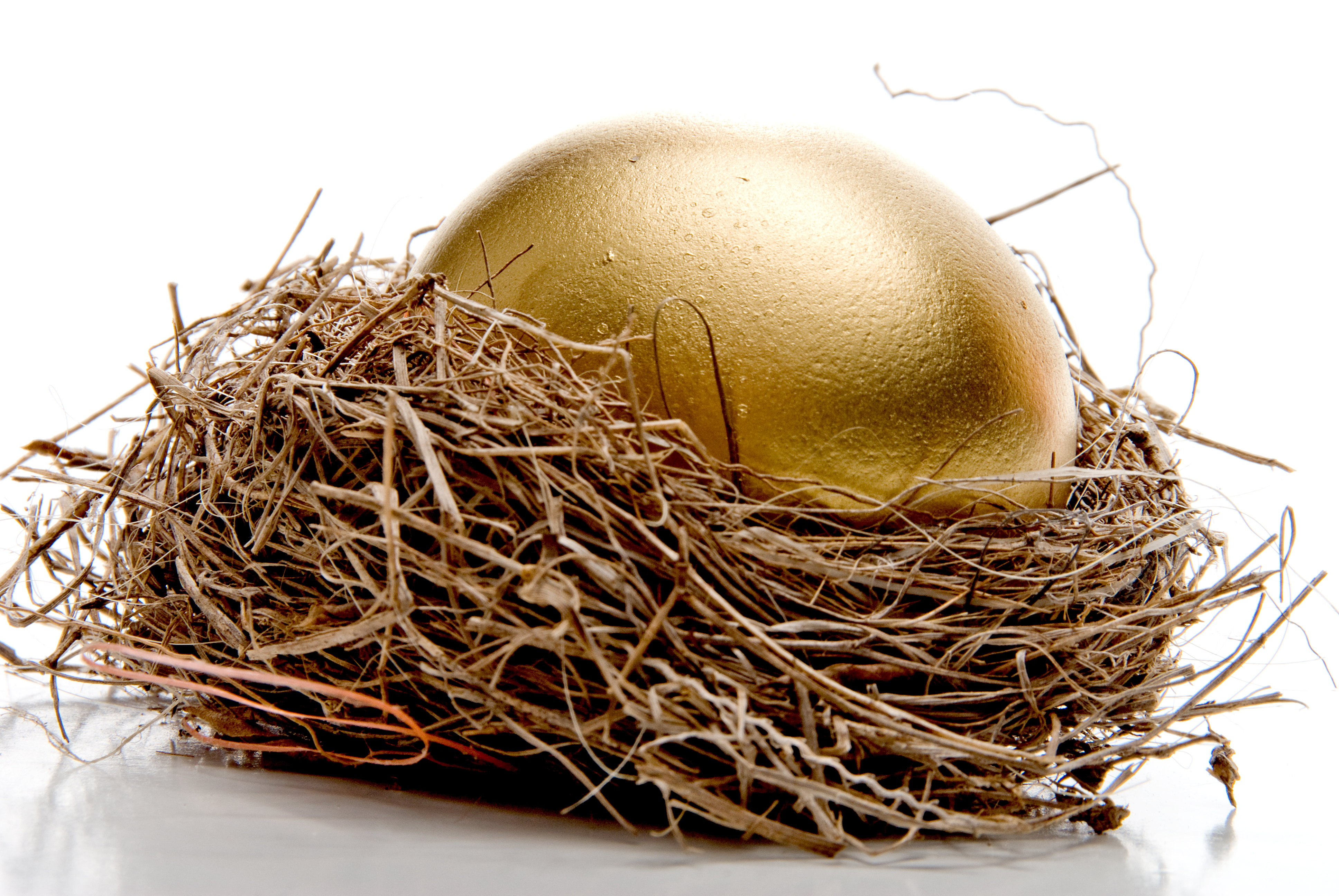 Regulators are Coming for the DeFi Goose and Its Golden Eggs