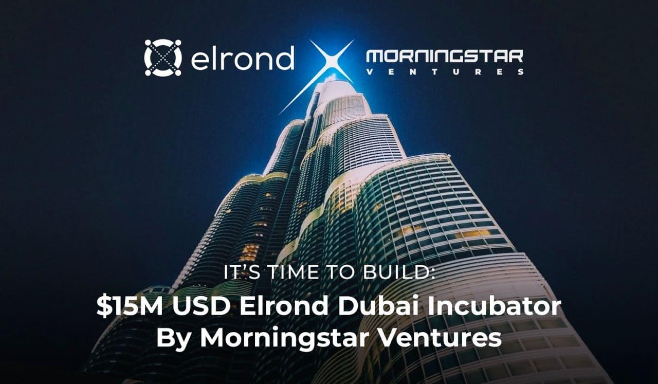 Morningstar Ventures Commits USD 15 Million To Invest In Projects Building On Elrond Network