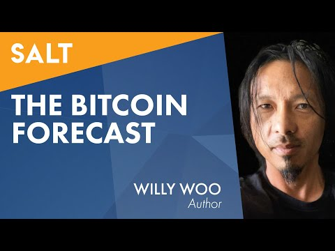 Willy Woo: The Bitcoin Forecast(ビットコイン・フォーキャスト)