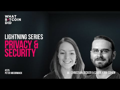 Lightning Network: Privacy and Security