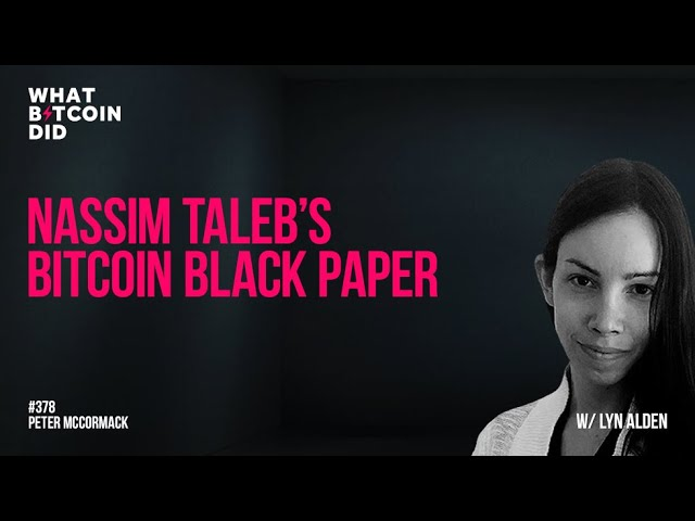 Analysing Nassim Taleb's Bitcoin Black Paper with Lyn Alden